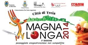 magna2014